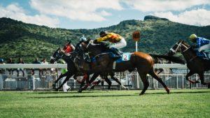 redemarrer-saison-concours-equestre-1