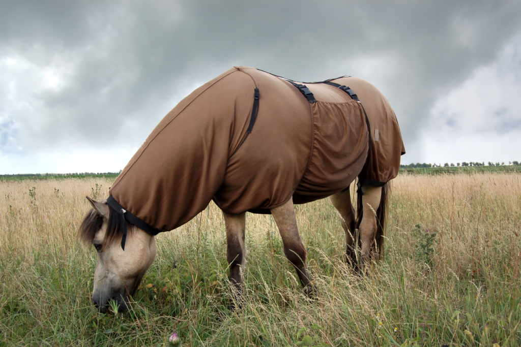 couverture du cheval